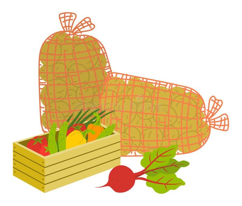 Colhendo produtos, vegetais caso que vetor ilustração stock