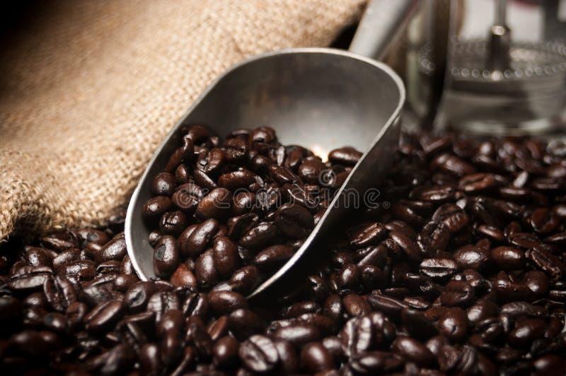 Colher de feijões de café fotos de stock royalty free