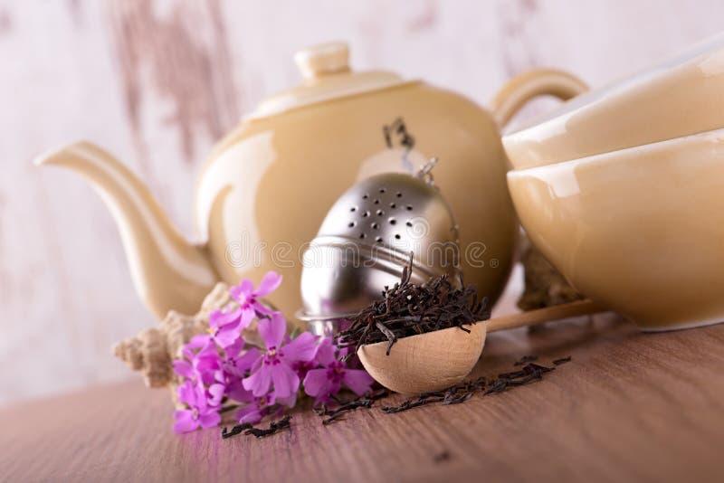 Colher de madeira com chá e grupo de chá secos imagem de stock
