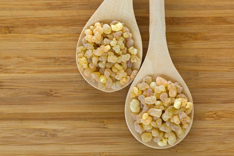 Colher de madeira do incenso amarelo aromático da goma da resina do sudanês imagem de stock