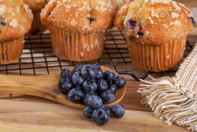 Colher de mirtilos e de muffin de blueberry foto de stock royalty free