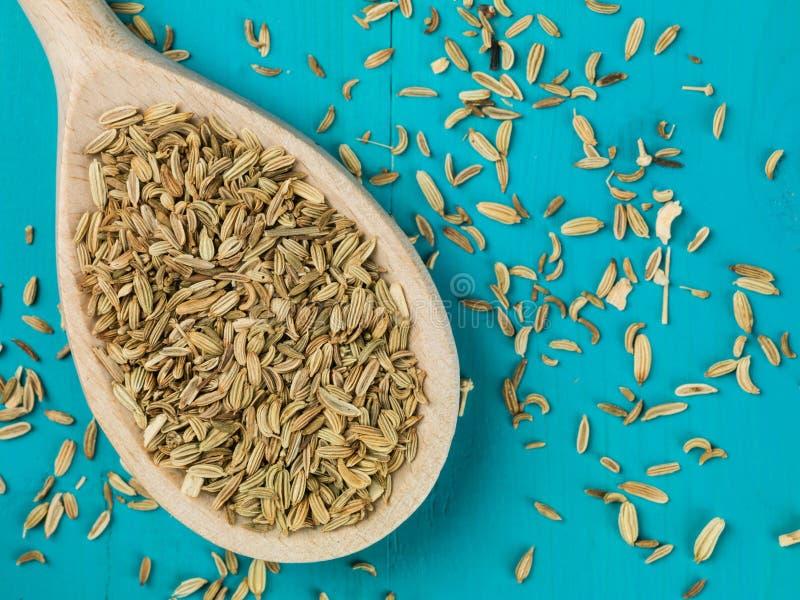 Colher de semente de erva-doce secada que cozinha a especiaria foto de stock royalty free