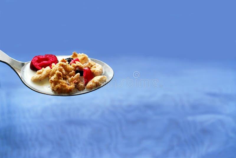 Colher do cereal fotos de stock royalty free