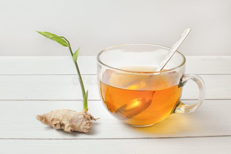 Colher no copo de vidro do chá ambarino quente, raiz seca do gengibre com o broto verde ao lado dele fotografia de stock