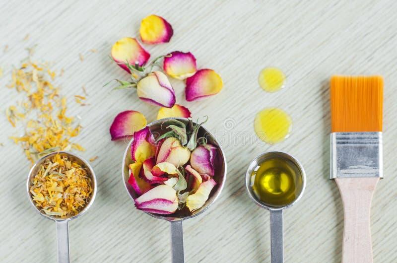 Colheres pequenas com os botões cor-de-rosa secos, as flores do cravo-de-defunto, óleo cor-de-rosa ou azeite essencial e escova c foto de stock