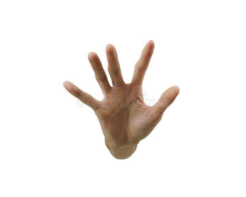 A colheu do sinal da parada do gesto de mão isolado no fundo branco Com cuidado entalhe pelo trajeto de grampeamento da ferrament imagem de stock royalty free