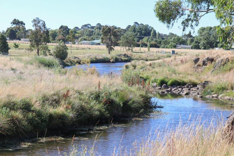 Colibanrivier stroomafwaarts van de Lauriston-Reservoirdam royalty-vrije stock fotografie