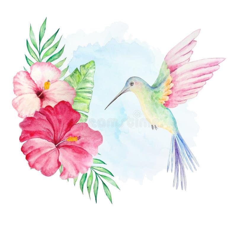 Colibrí de la acuarela con las flores y el fondo ilustración del vector