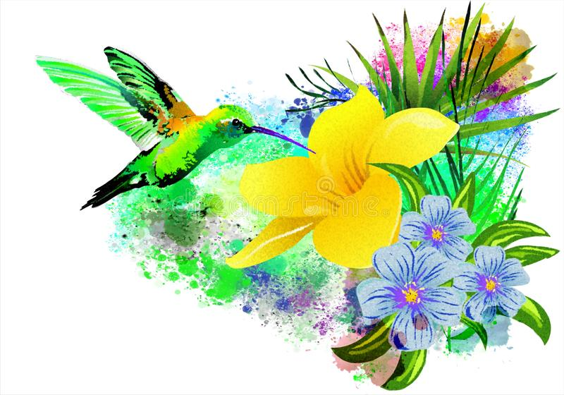 Colibrí sobre una flor tropical libre illustration