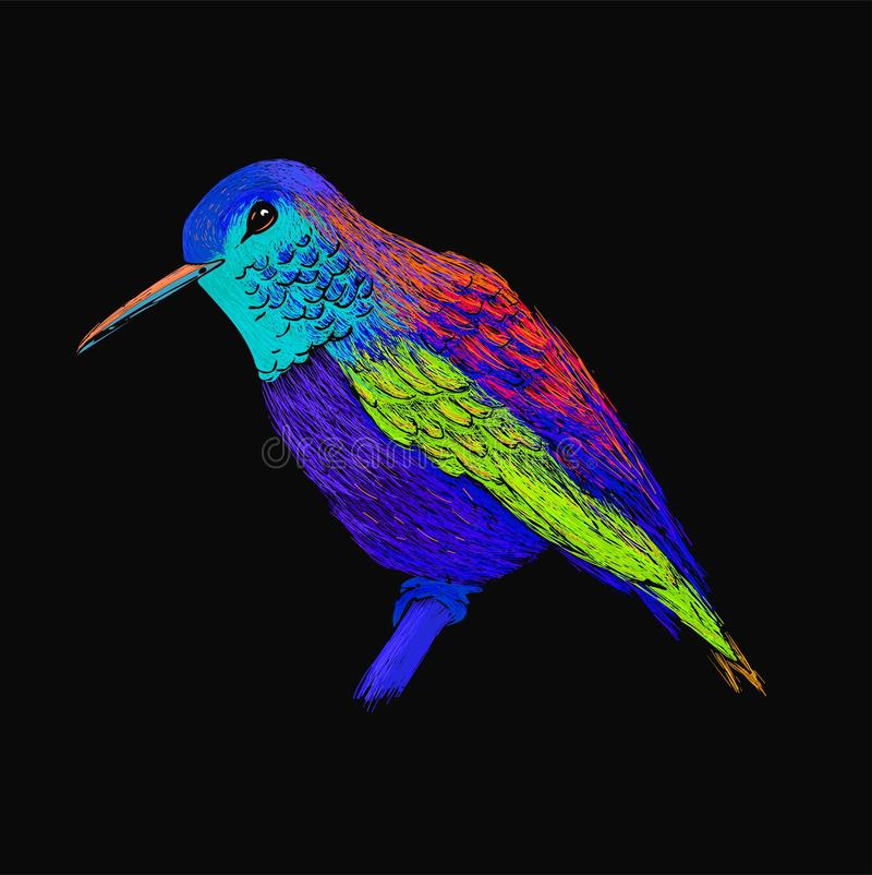 Colibri avec le plumage brillant coloré Style moderne d'art de bruit Oiseau coloré, fond noir Illustration de vecteur de colibri illustration libre de droits