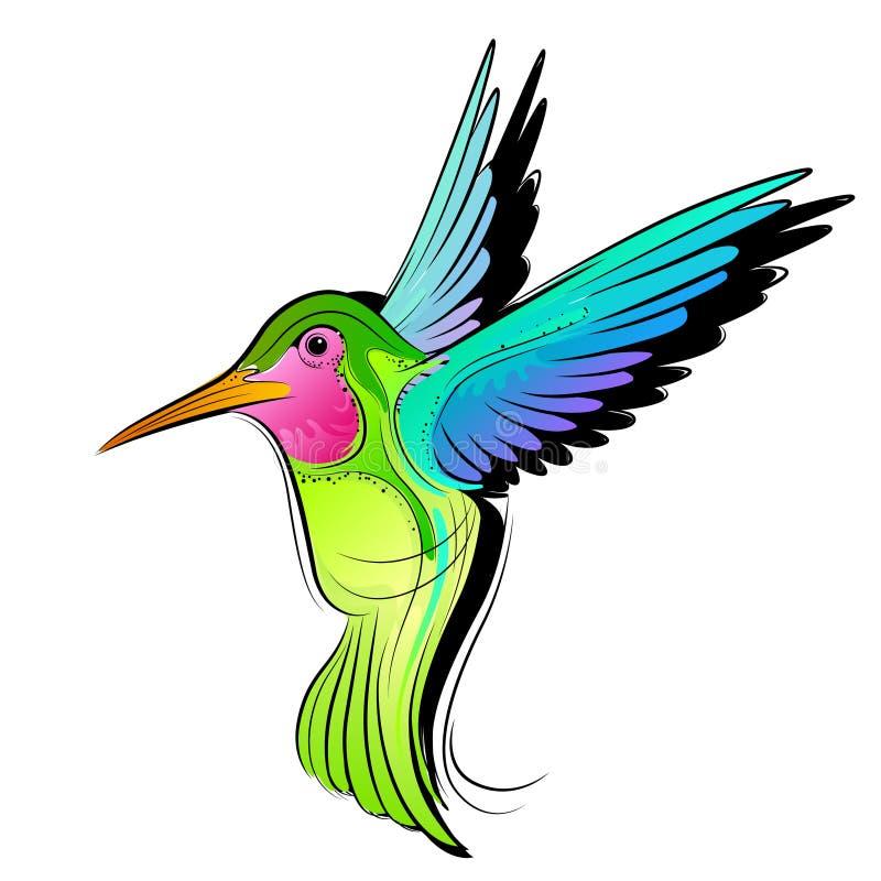 Colibri colorido ilustração do vetor