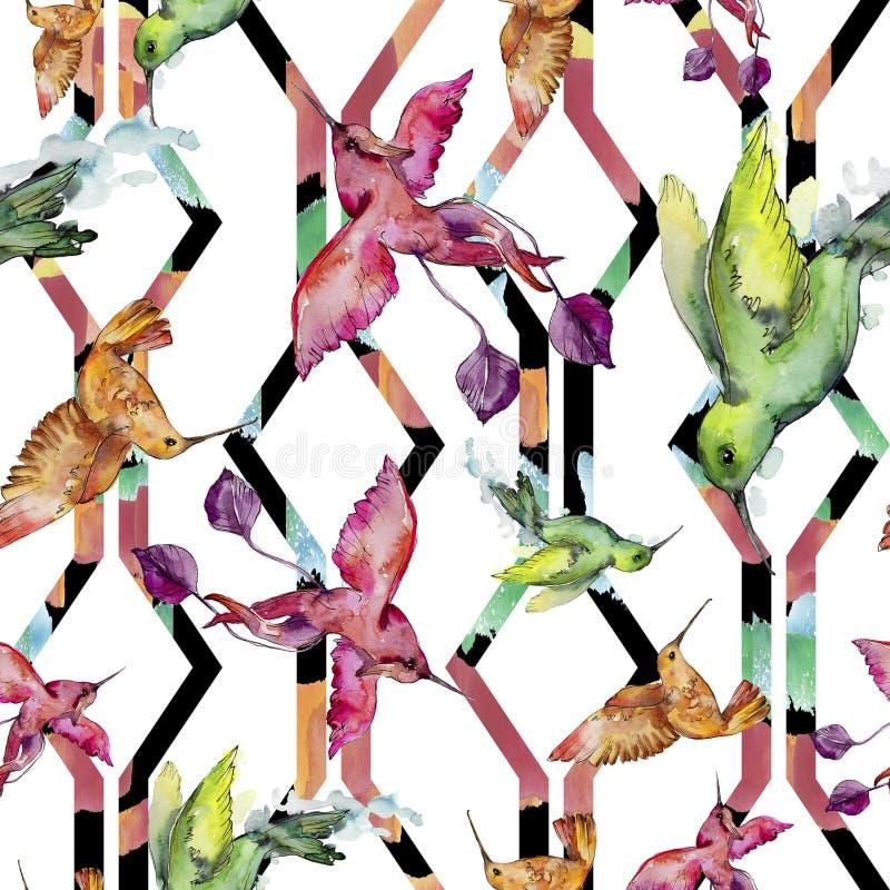 Colibri colorido do pássaro do céu em uns animais selvagens pelo estilo da aquarela Teste padrão sem emenda do fundo ilustração stock