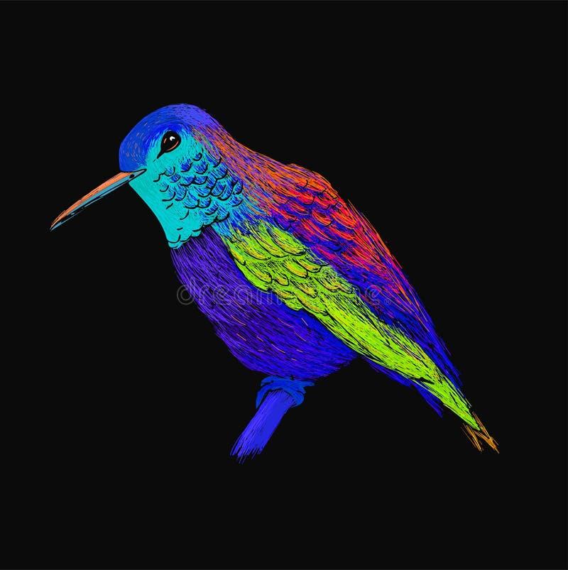 Colibri com plumagem lustrosa colorida Estilo moderno do pop art Pássaro colorido, fundo preto Ilustração do vetor do colibri ilustração royalty free