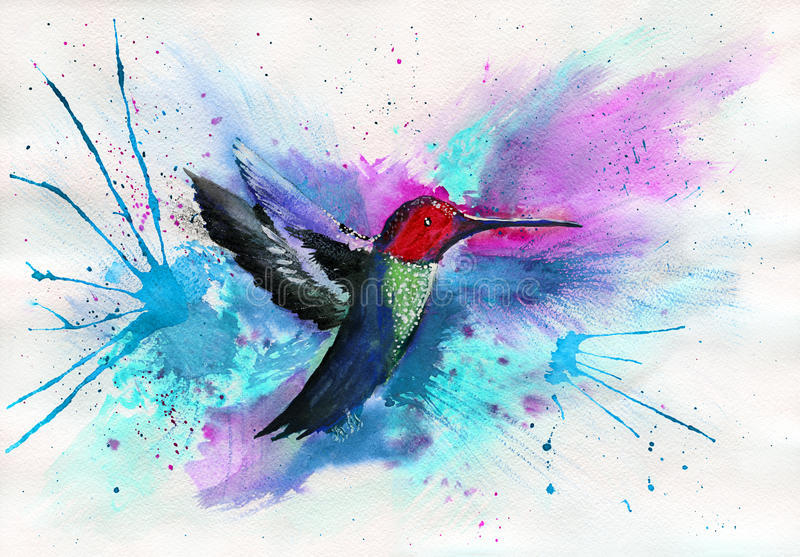 Colibri d'aquarelle photo stock
