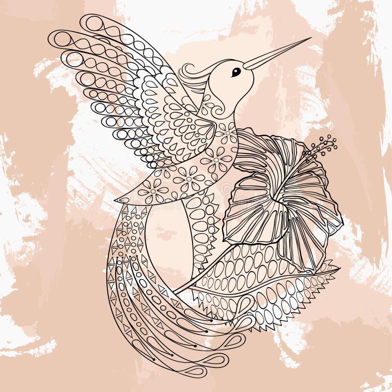 Colibri do vetor de Zentangle no hibiskus, projeto da tatuagem no doodl ilustração royalty free
