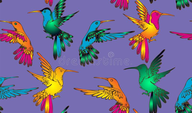 Colibri - nette Vögel lizenzfreie abbildung