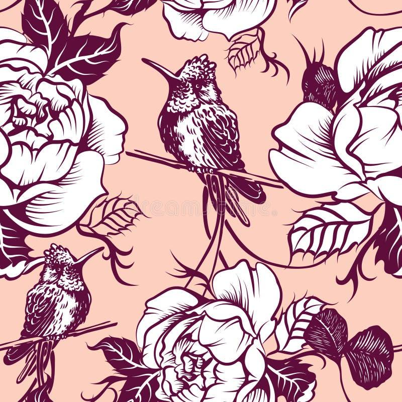 Colibri preto e branco da águia da tração ilustração royalty free