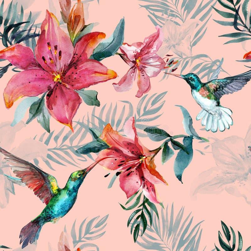 Colibris coloridos bonitos do voo e flores vermelhas no fundo cor-de-rosa Teste padrão sem emenda tropical exótico Pintura de Wat ilustração do vetor