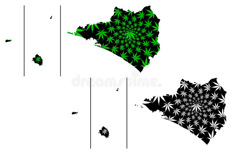 Colima Revillagigedo Archipelago map is designed cannabis leaf green and black, Free and Sovereign State of Colima San. Benedicto, Socorro, Clarion map made of stock illustration