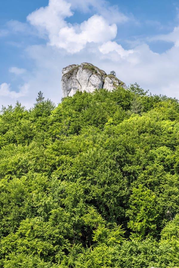 Colina de Brada, rocas de Sulov, Eslovaquia, caminando tema fotos de archivo