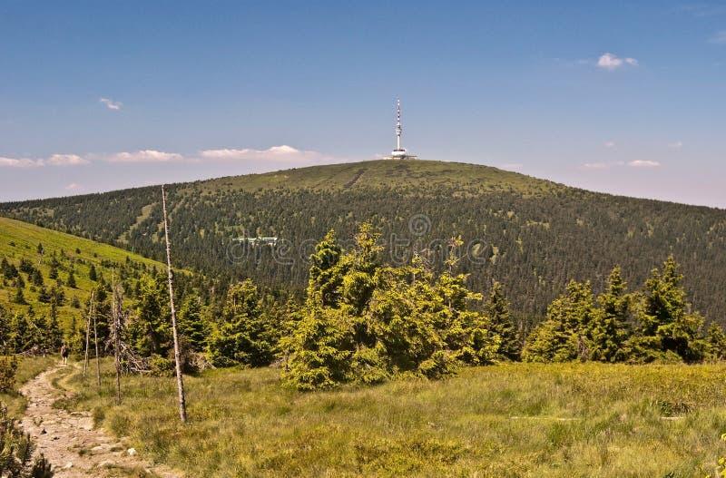 Colina de Praded en las montañas de Jeseniky del verano en República Checa fotografía de archivo