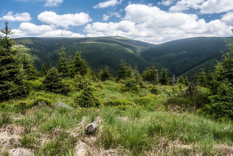 Colina de Praded en las montañas de Jeseniky en Checo imagen de archivo libre de regalías