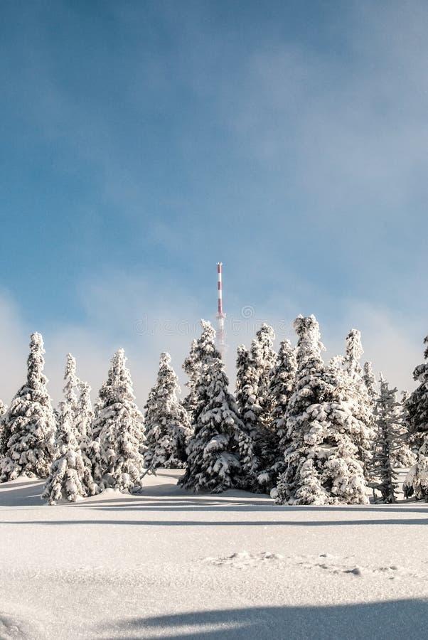 Colina de Praded en las montañas de Jeseniky del invierno en República Checa foto de archivo