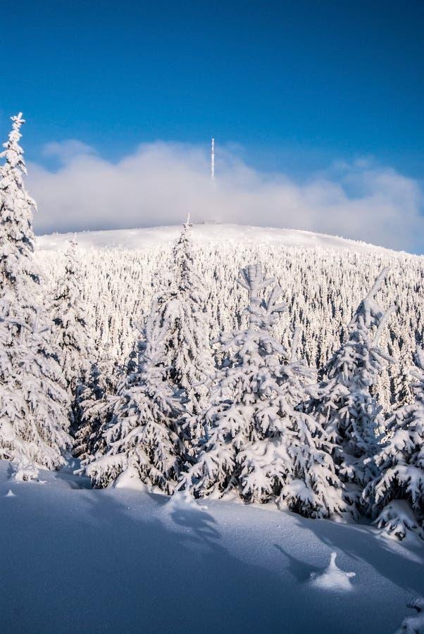 Colina de Praded en las montañas de Jeseniky del invierno en República Checa durante invierno fotos de archivo