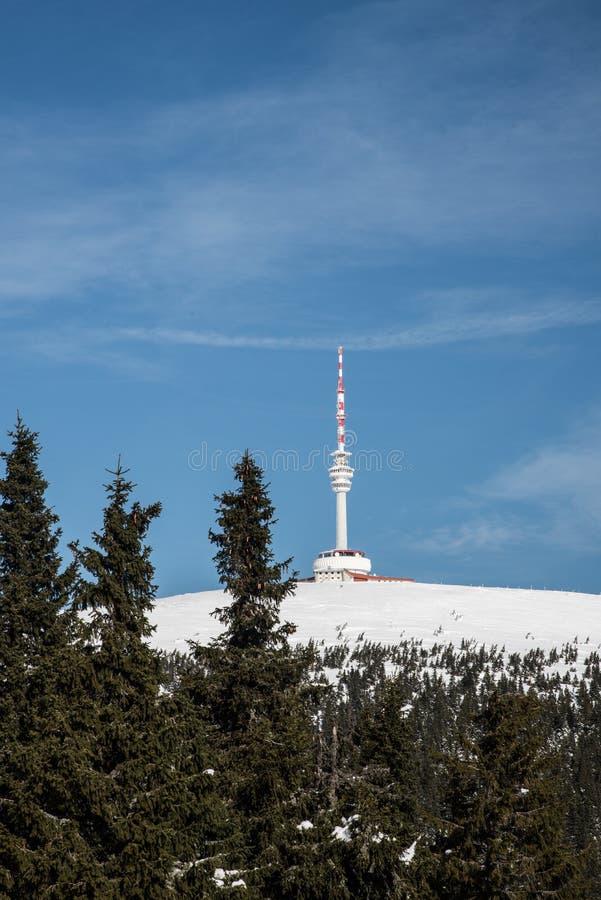 Colina de Praded en las monta?as de Jeseniky del invierno en Rep?blica Checa fotografía de archivo