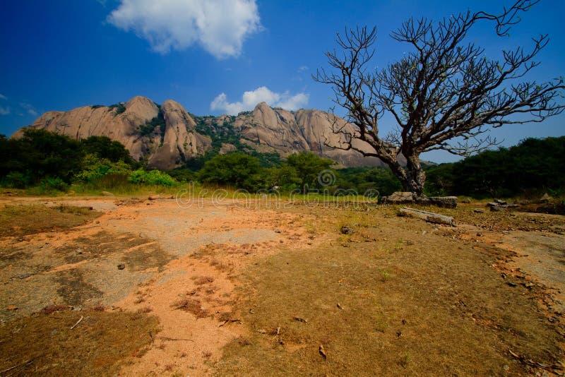 Colina de Savandugra en la estación seca imagen de archivo libre de regalías
