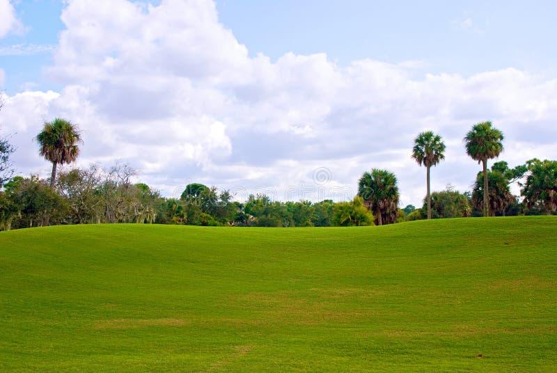 Colina del balanceo del verde del campo de golf fotos de archivo libres de regalías