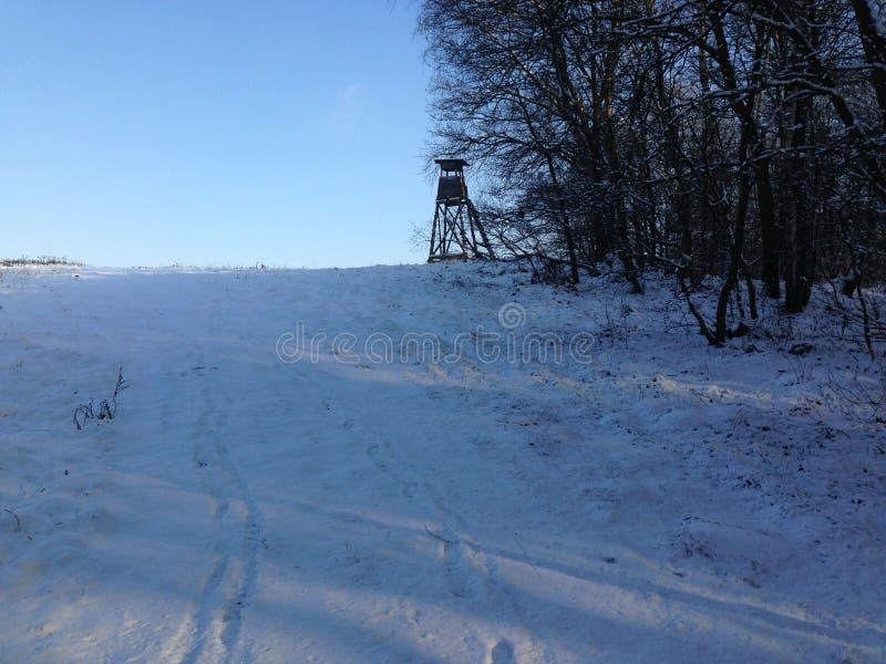 Colina del invierno imagen de archivo libre de regalías