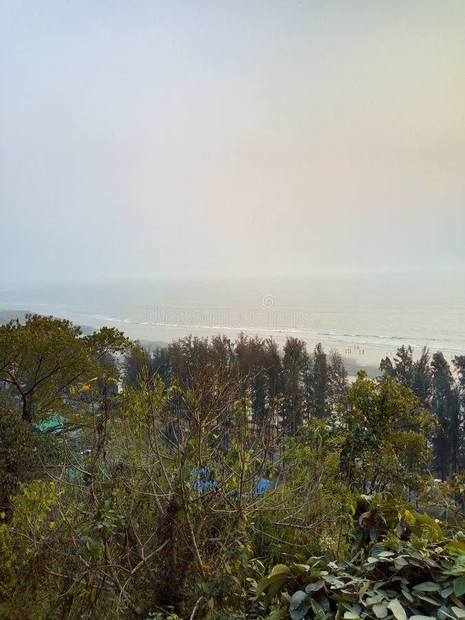 colina sundarban de la India San Martín del bosque foto de archivo libre de regalías