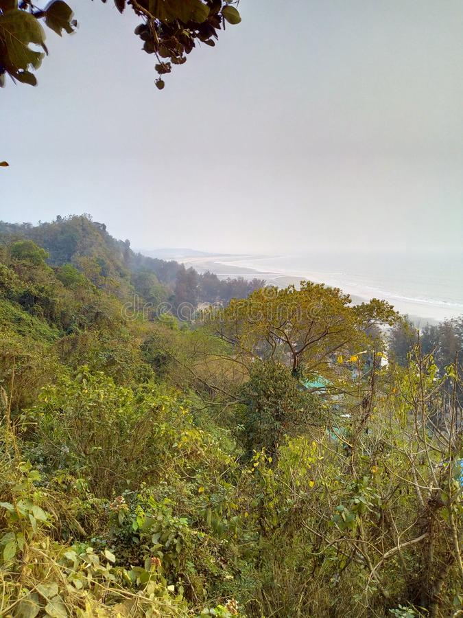 colina sundarban de la India San Martín del bosque imagen de archivo libre de regalías