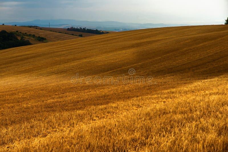 Colinas con los campos arados, Modra foto de archivo libre de regalías