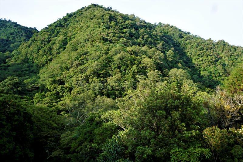 Colinas de Juan Castro Blanco National Park en mañana soleada imagen de archivo