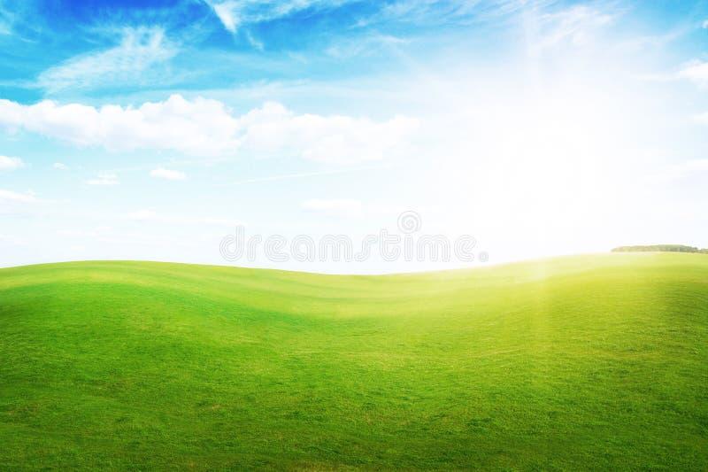 Colinas de la hierba verde bajo el sol del mediodía en cielo azul. imagen de archivo libre de regalías