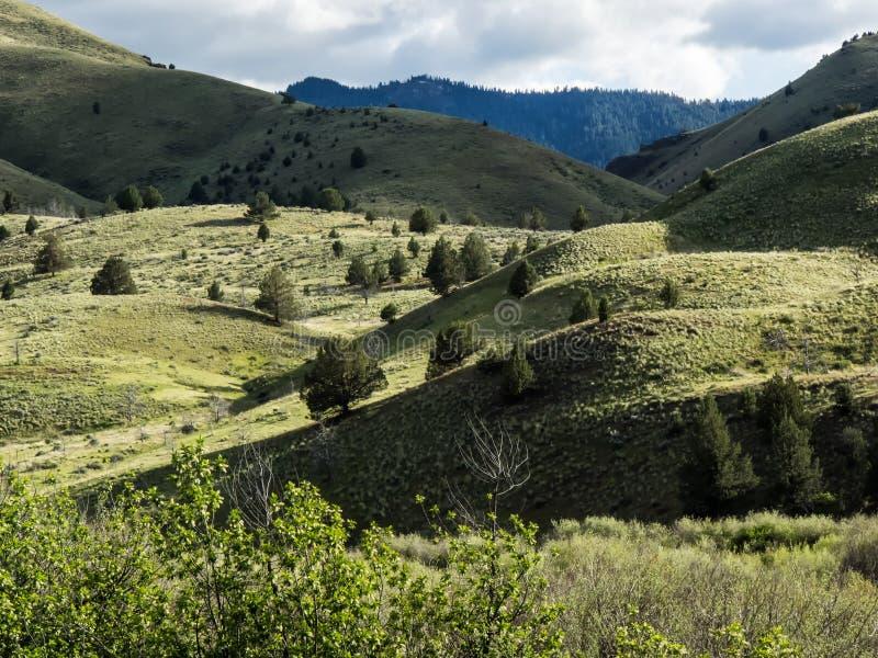 Colinas de la montaña en primavera fotografía de archivo