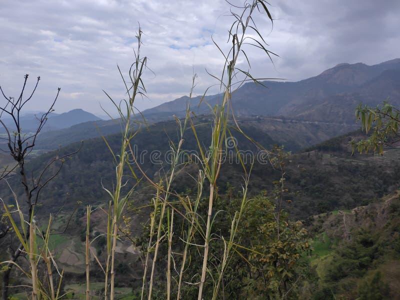 Colinas de Pé de Himalaya na índia fotografia de stock royalty free