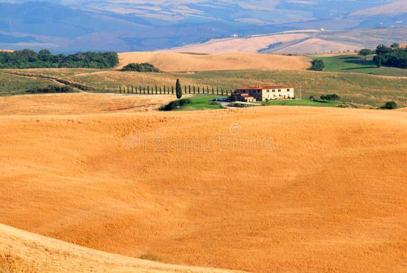 Colinas de Toscana imagen de archivo