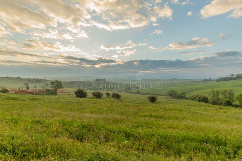 Colinas de Toscana: Val d 'Orcia por la mañana con las luces del amanecer Siena, Toscana, Italia imagenes de archivo