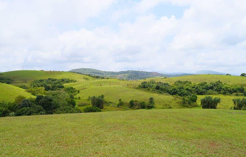 Colinas de Wagamon - campos verdes contra el cielo en Idukki, Kerala, la India fotografía de archivo