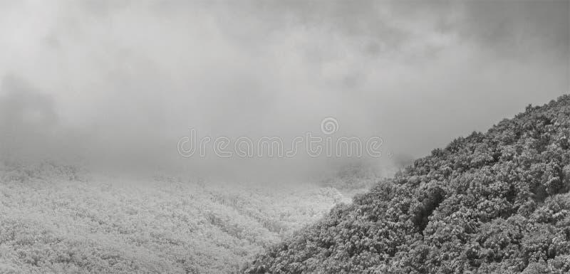 Colinas nevadas de la foto blanco y negro en las nubes por la mañana temprana del invierno imágenes de archivo libres de regalías