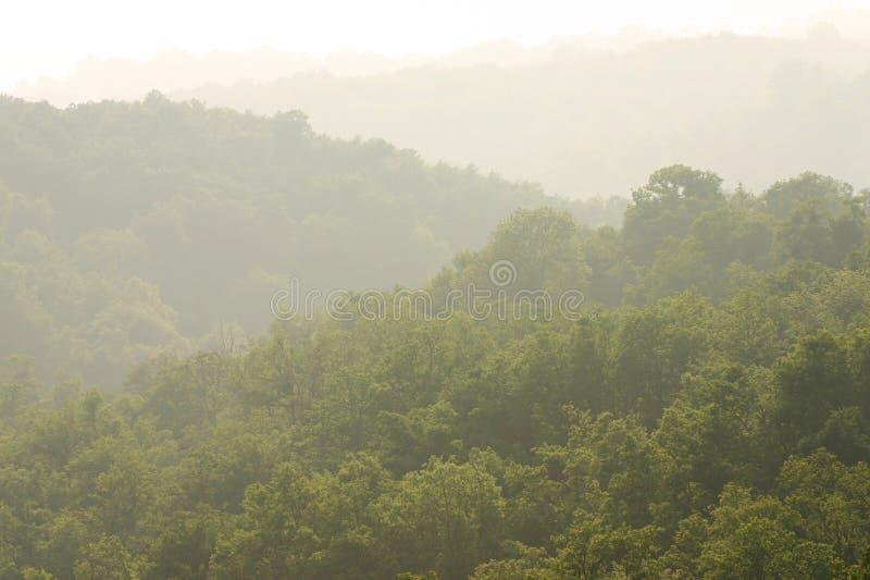 Colinas verdes brumosas imagenes de archivo