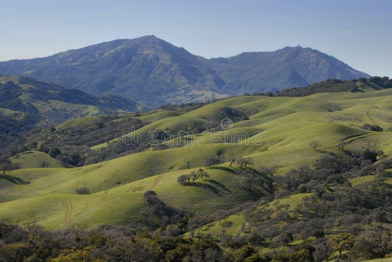 Colinas verdes de California imagen de archivo
