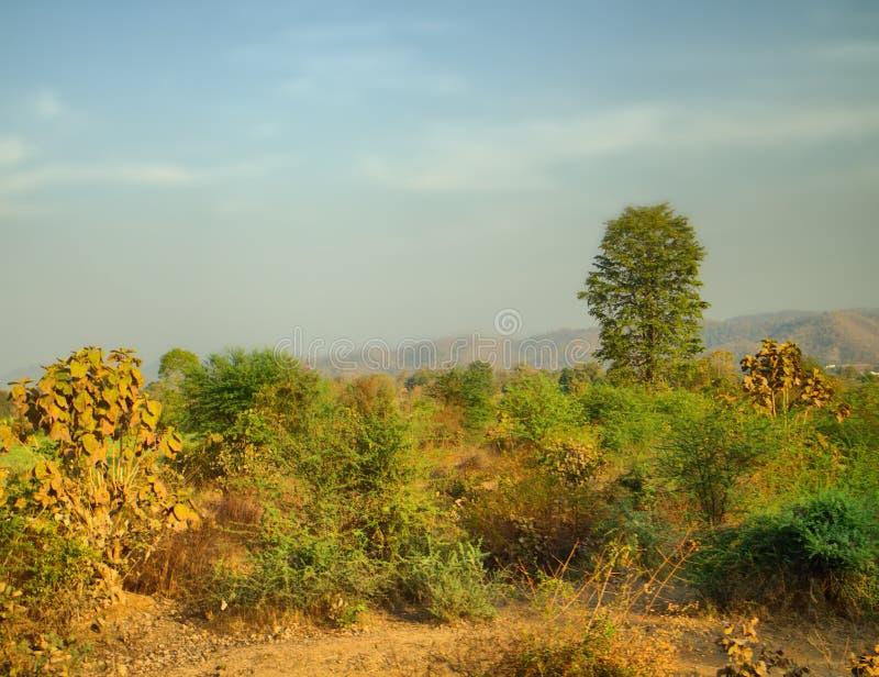 Colinas verdes en la entrada a la meseta Deccan, la India imagenes de archivo