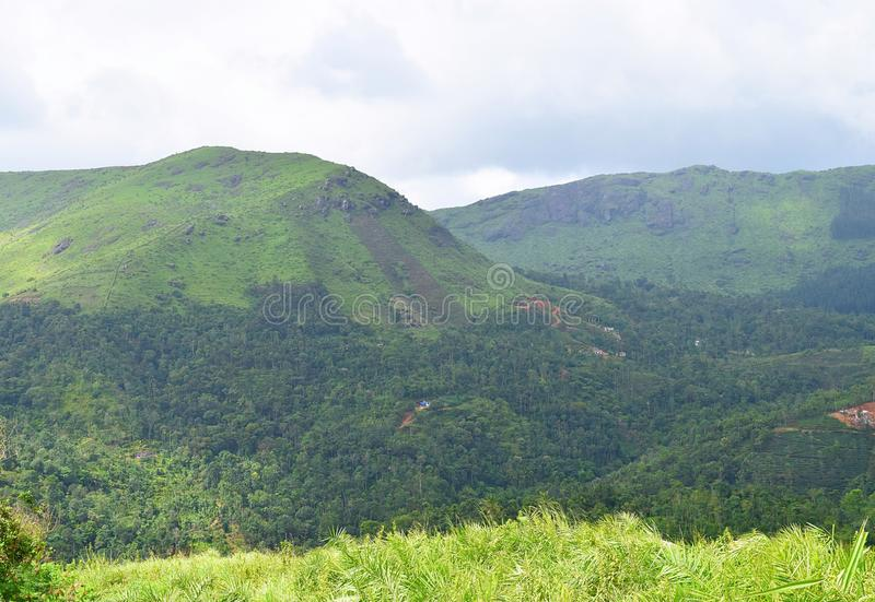 Colinas verdes - Ghats occidental - paisaje en Kerala, la India foto de archivo