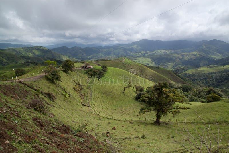 Colinas verdes rodantes en campo fotos de archivo