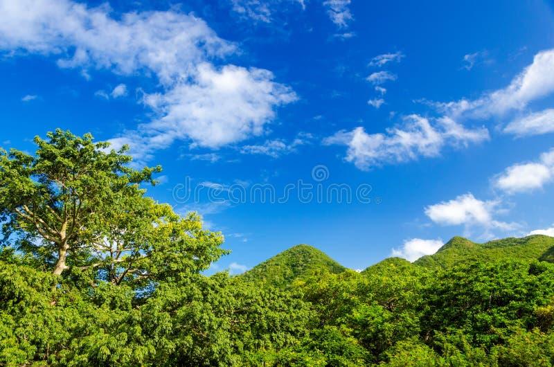 Colinas verdes y cielo azul foto de archivo libre de regalías