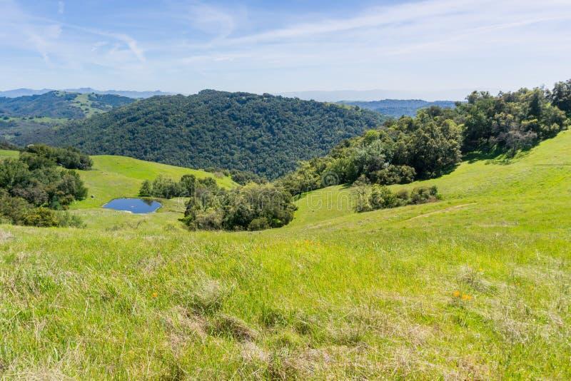 Colinas y valles verdes en el parque de estado de Henry Coe, California foto de archivo